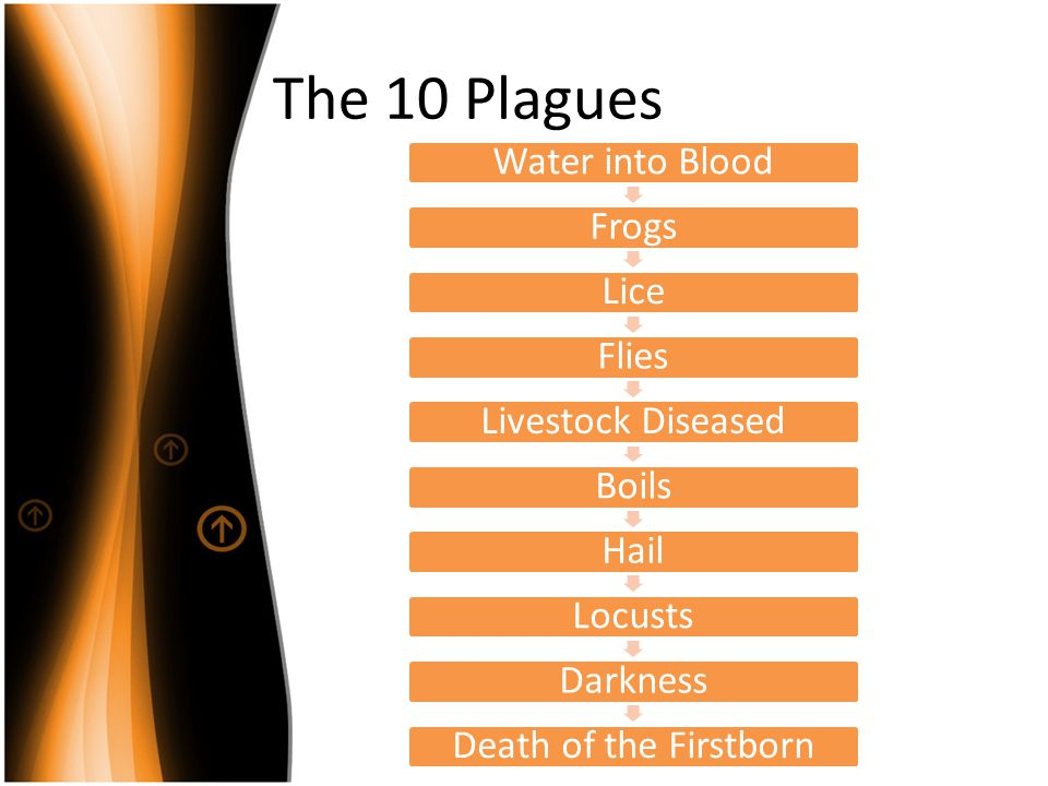 The 10 Plagues Water into Blood Frogs Lice Flies Livestock Diseased