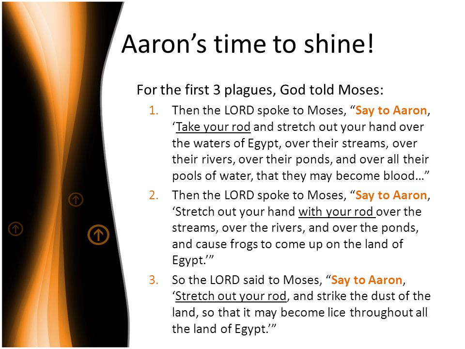 Aaron's time to shine! For the first 3 plagues, God told Moses: