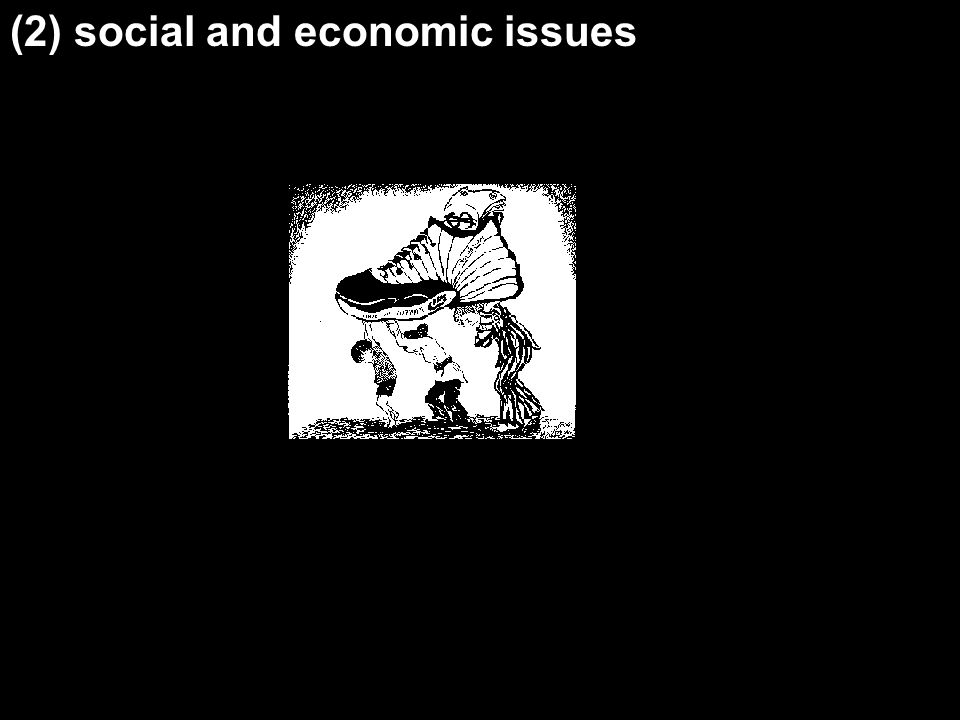 (2) social and economic issues