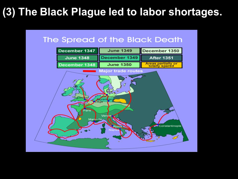 (3) The Black Plague led to labor shortages.