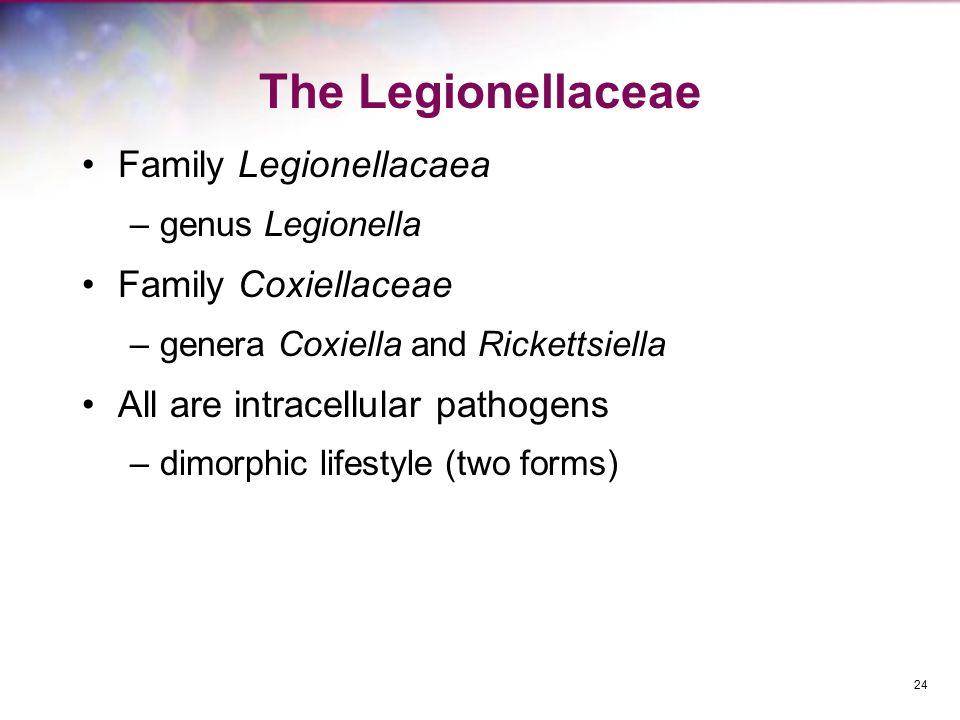 The Legionellaceae Family Legionellacaea Family Coxiellaceae