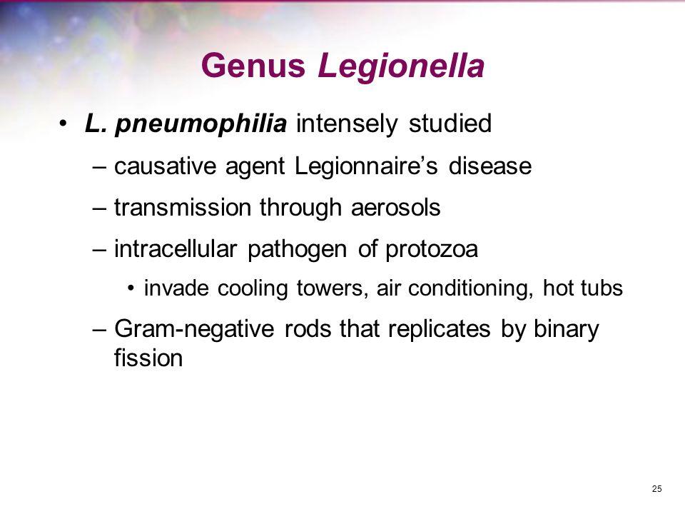 Genus Legionella L. pneumophilia intensely studied