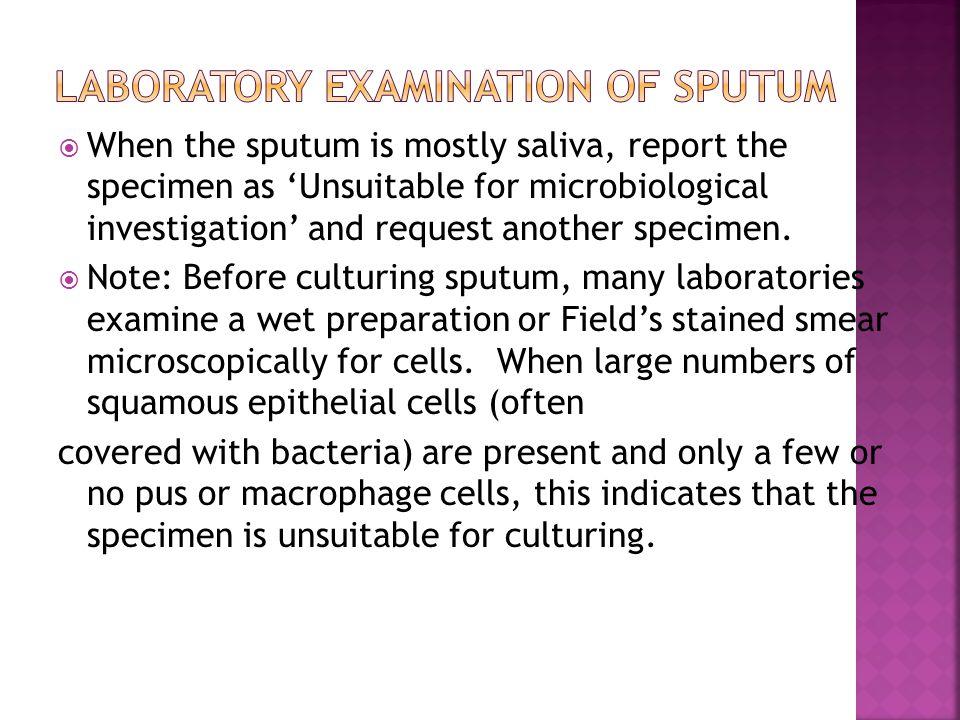 LABORATORY EXAMINATION OF SPUTUM