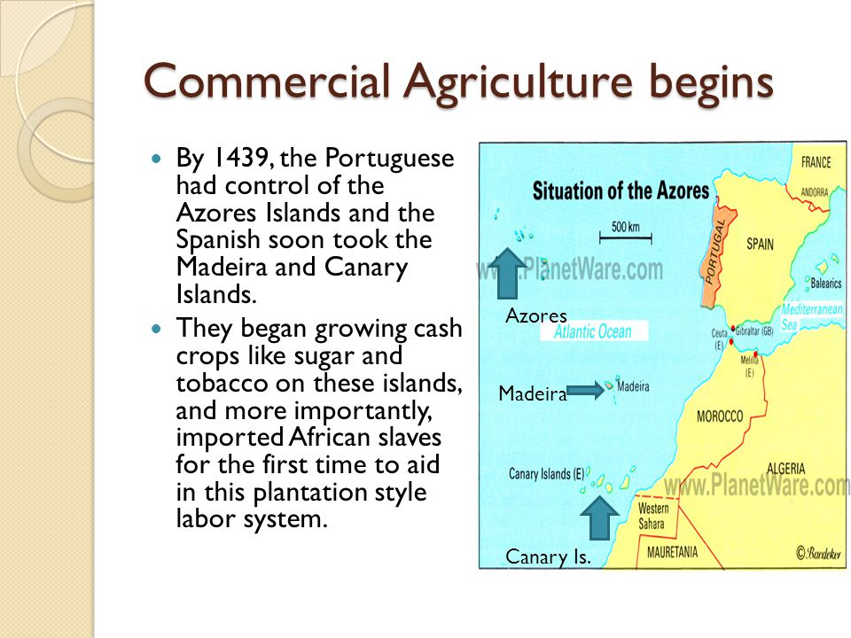 Commercial Agriculture begins