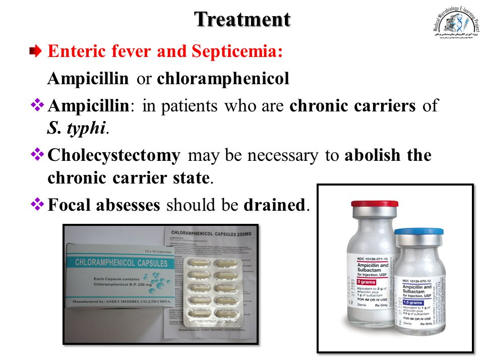 Treatment Enteric fever and Septicemia: Ampicillin or chloramphenicol