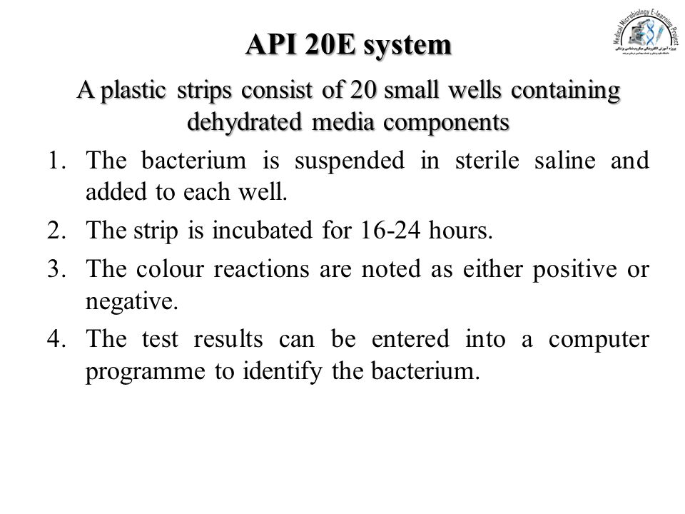 API 20E system A plastic strips consist of 20 small wells containing dehydrated media components.