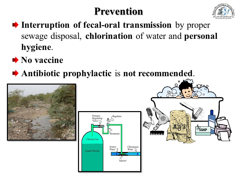 Prevention Interruption of fecal-oral transmission by proper sewage disposal, chlorination of water and personal hygiene.