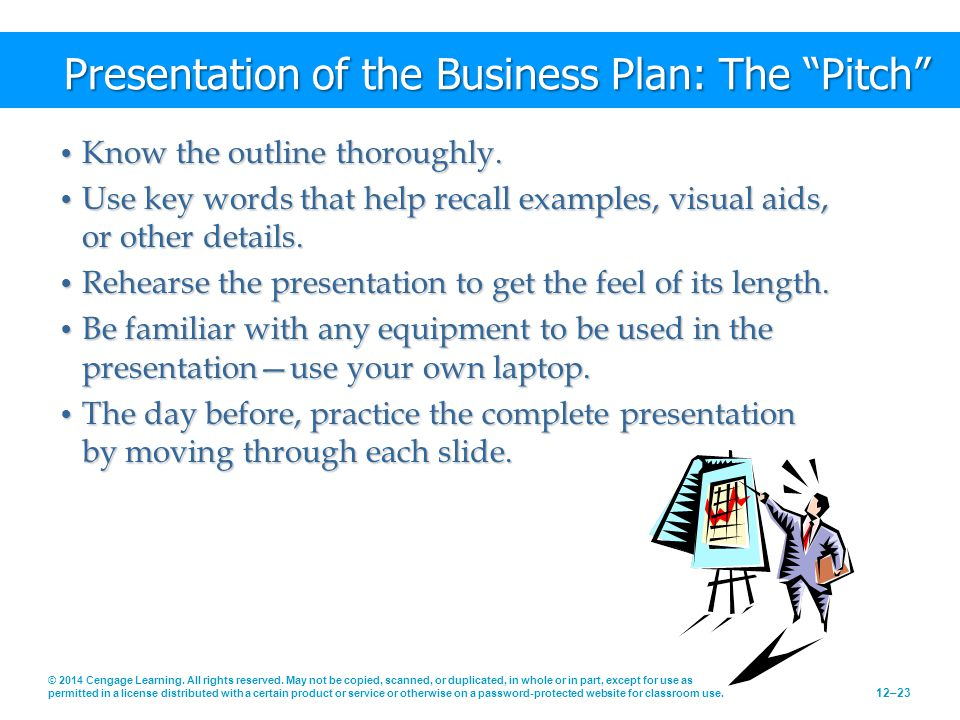 Presentation of the Business Plan: The Pitch