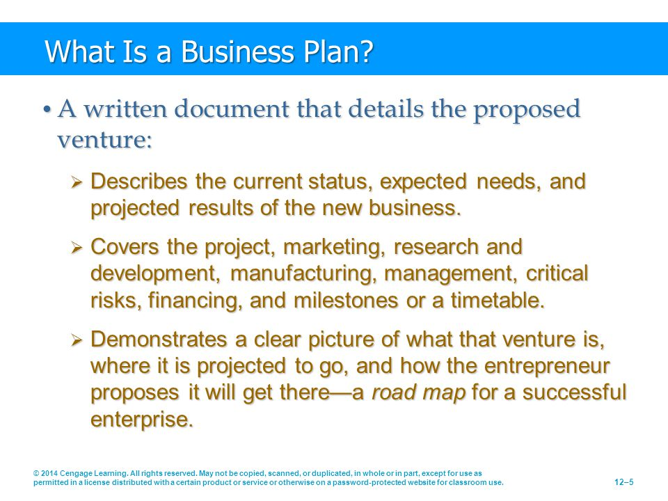 What Is a Business Plan A written document that details the proposed venture: