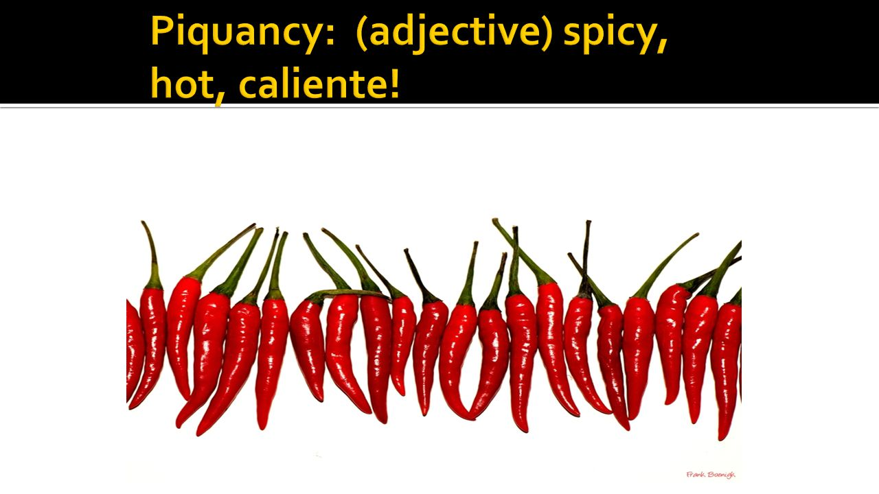 Piquancy: (adjective) spicy, hot, caliente!