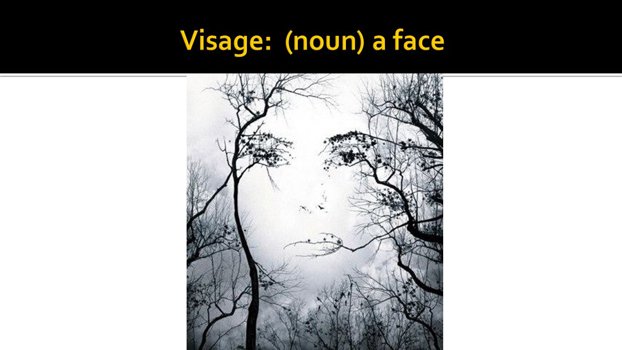 Visage: (noun) a face