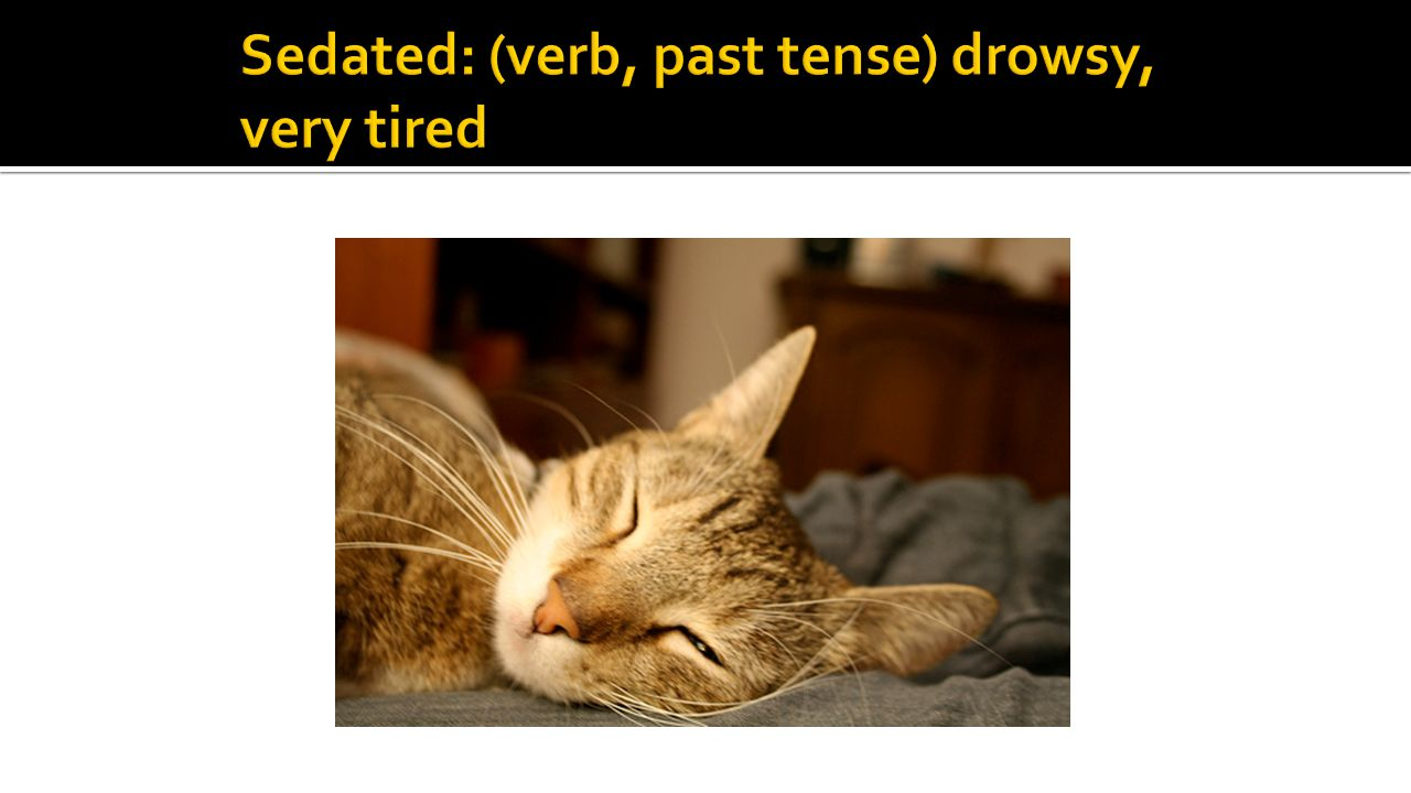 Sedated: (verb, past tense) drowsy, very tired