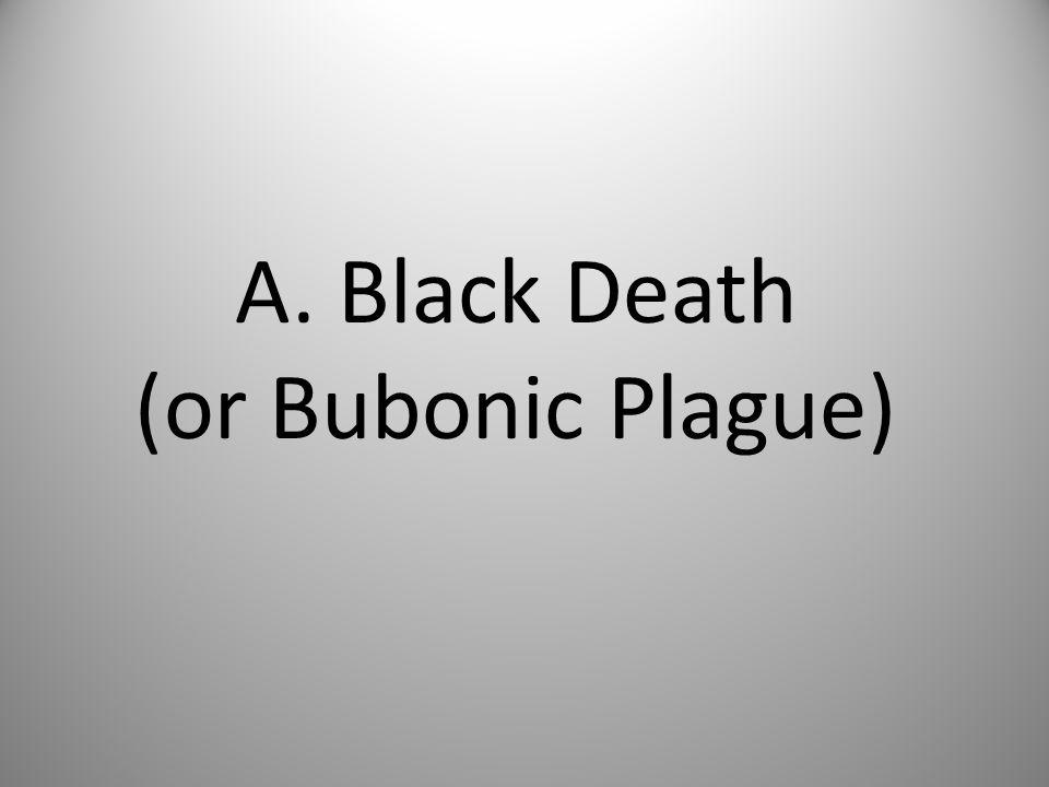 A. Black Death (or Bubonic Plague)