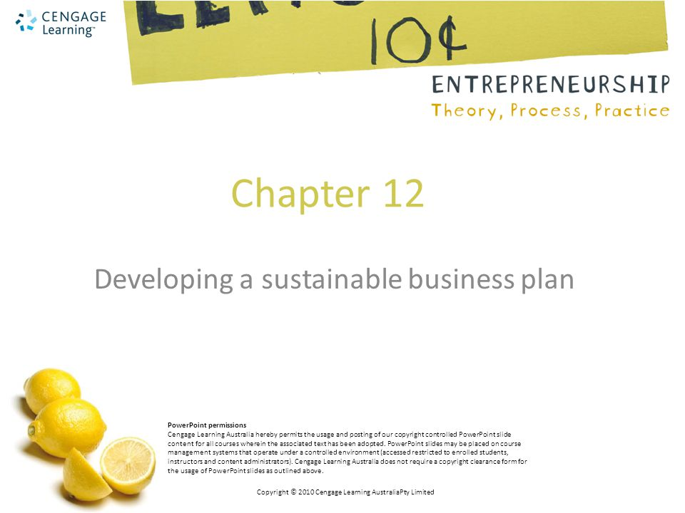 Developing a sustainable business plan