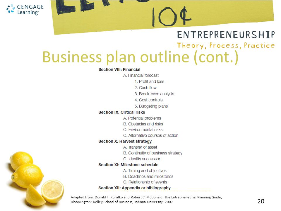 Business plan outline (cont.)