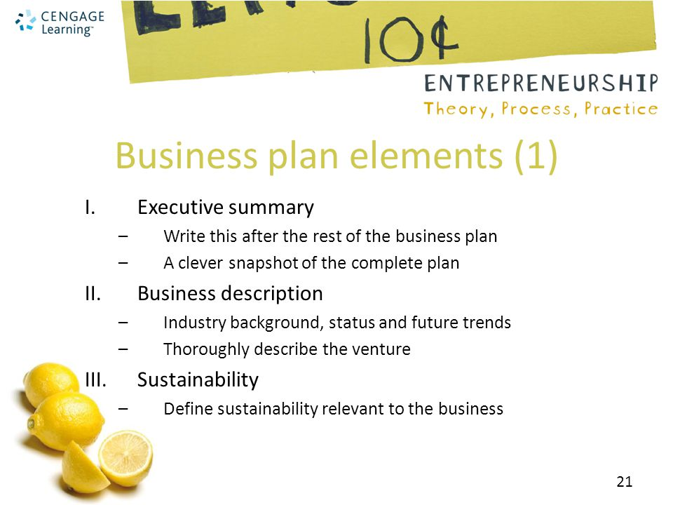 Business plan elements (1)