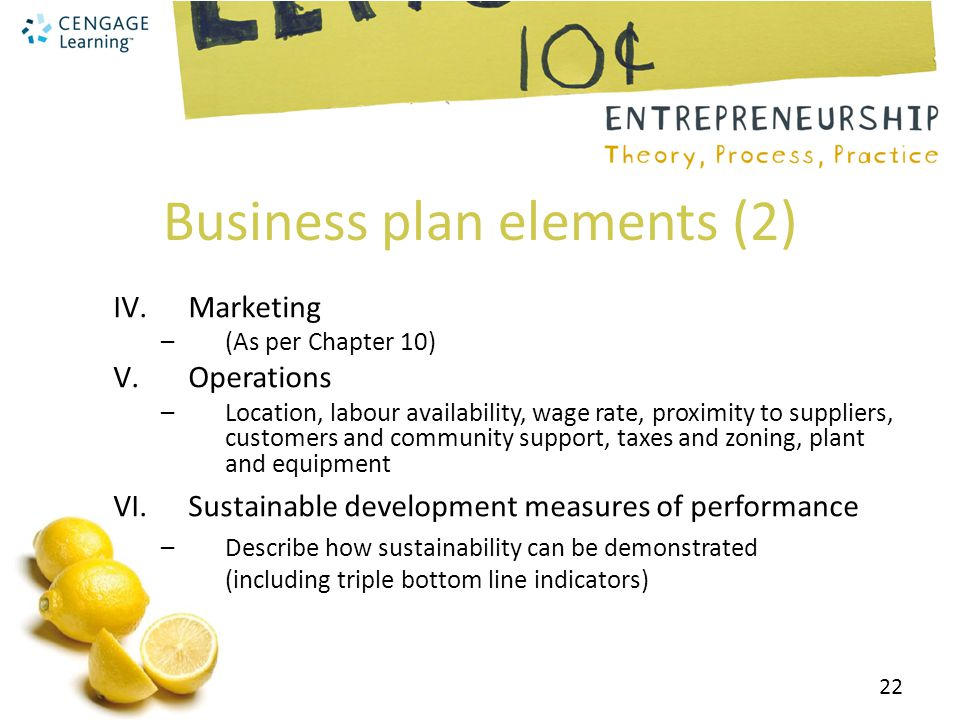 Business plan elements (2)