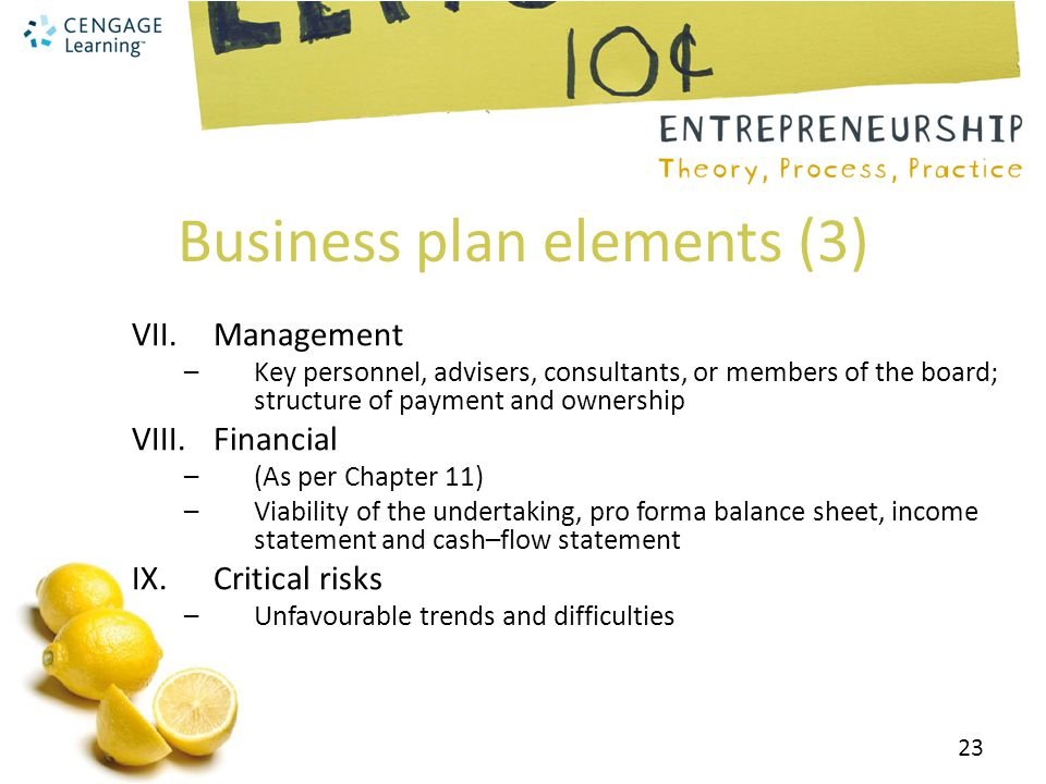 Business plan elements (3)