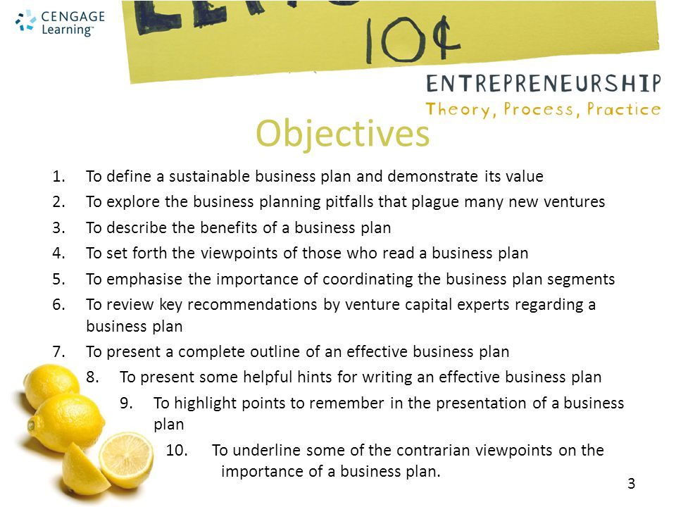 Objectives To define a sustainable business plan and demonstrate its value. To explore the business planning pitfalls that plague many new ventures.