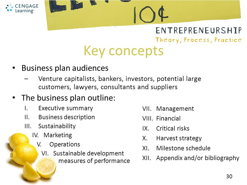 Business plan industry definition of sustainability