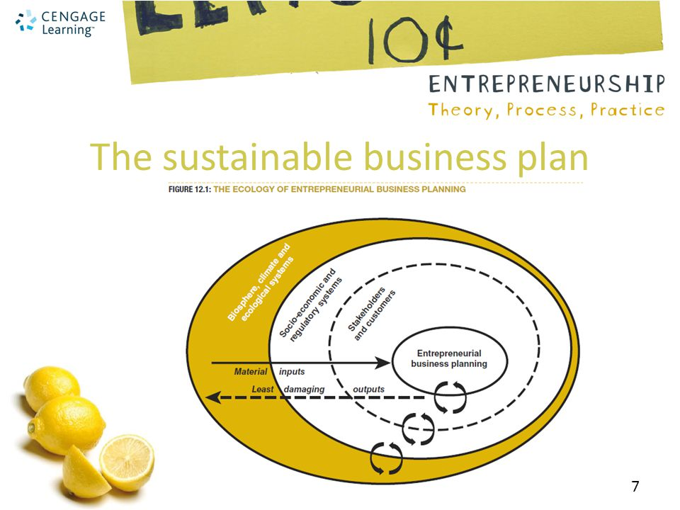 The sustainable business plan