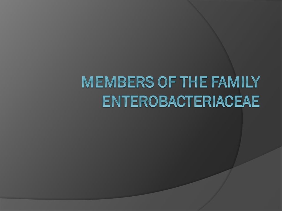 Members of the Family Enterobacteriaceae