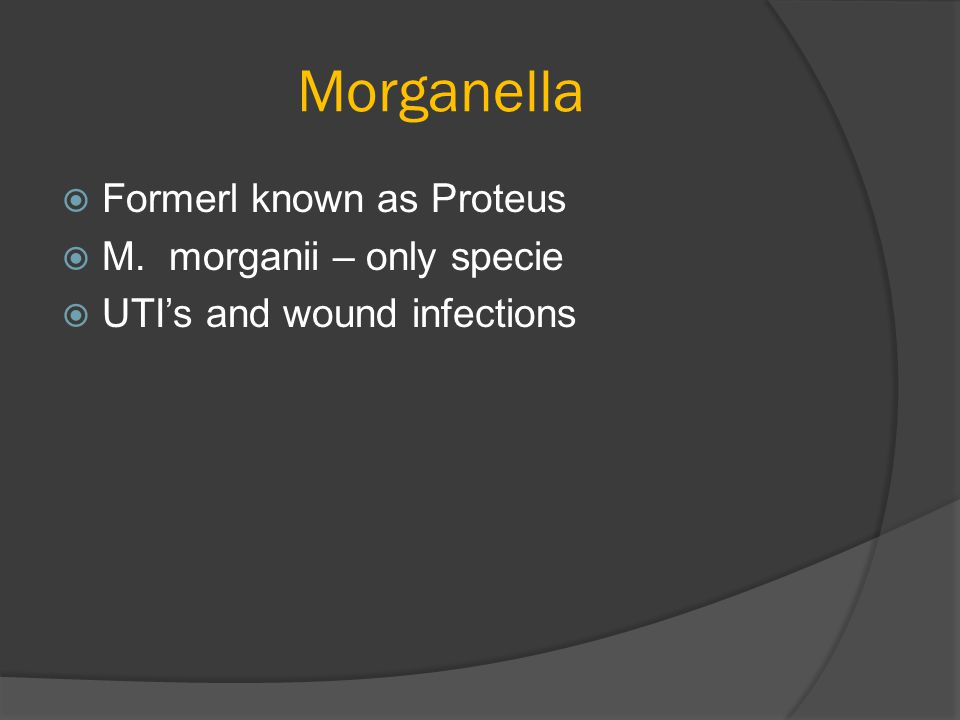 Morganella Formerl known as Proteus M. morganii – only specie