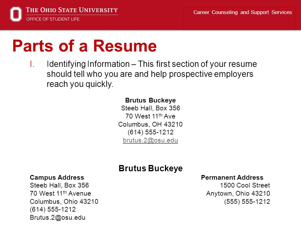 Career Counseling and Support Services