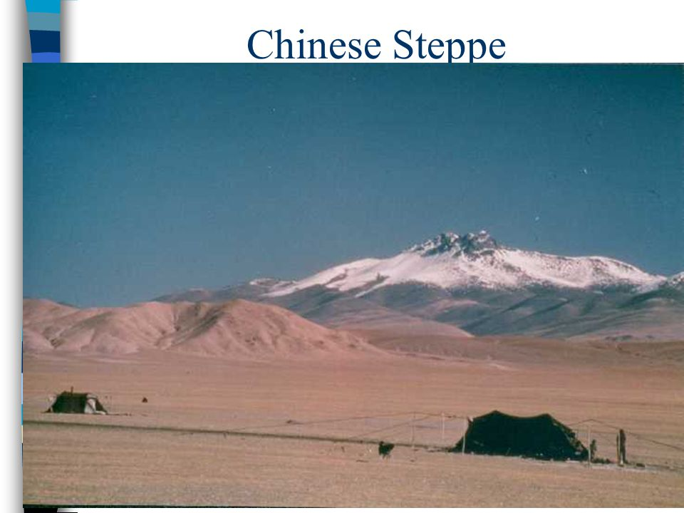 Chinese Steppe