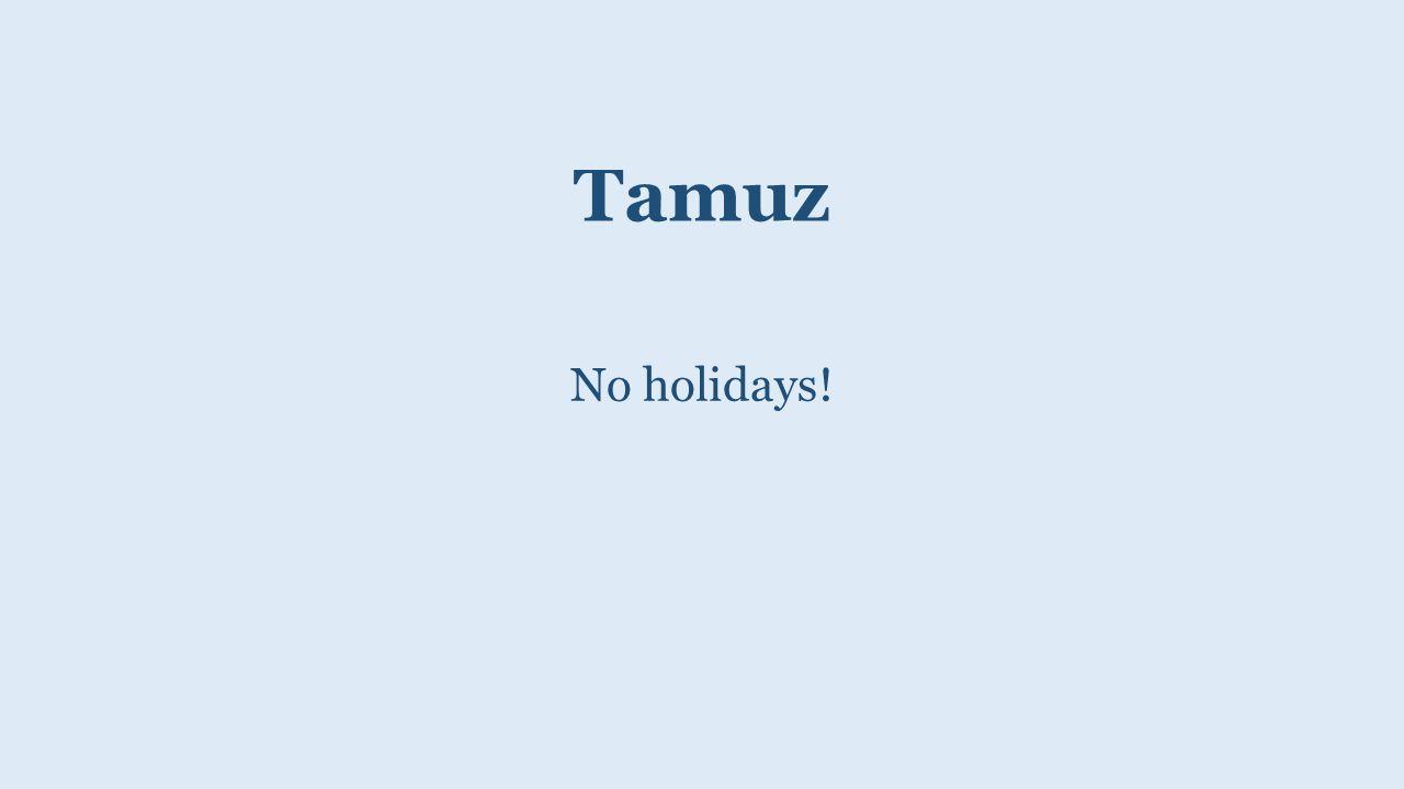 Tamuz No holidays!