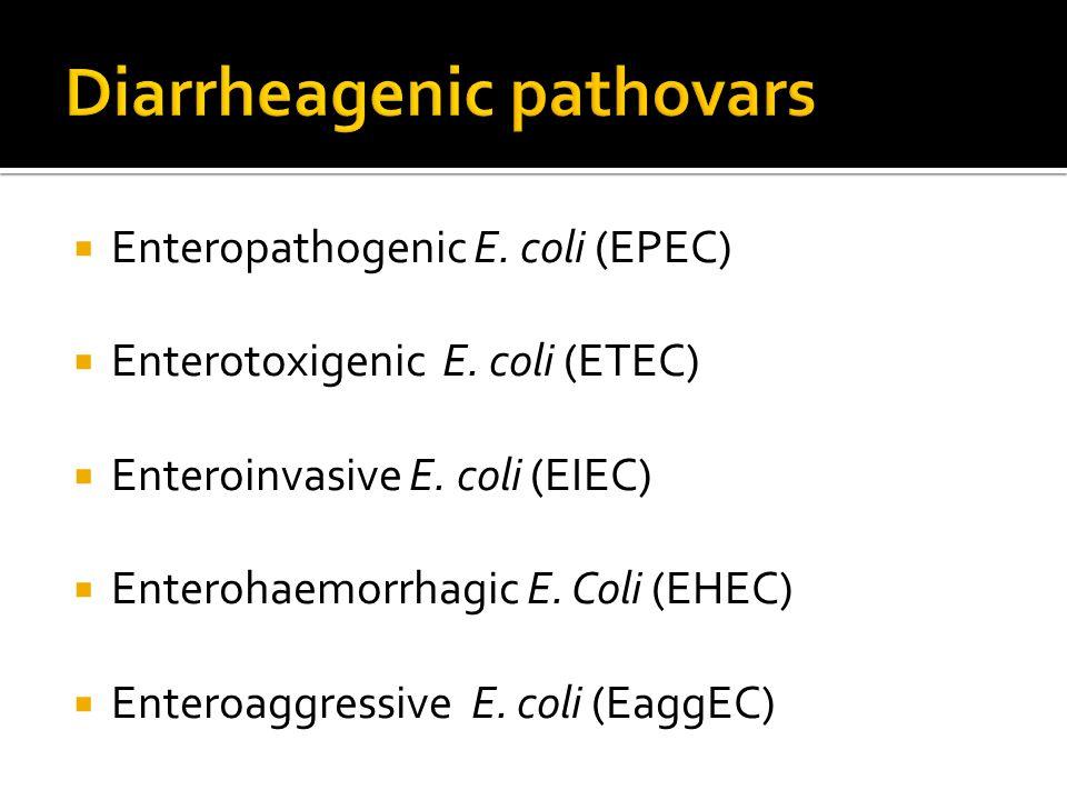 Diarrheagenic pathovars