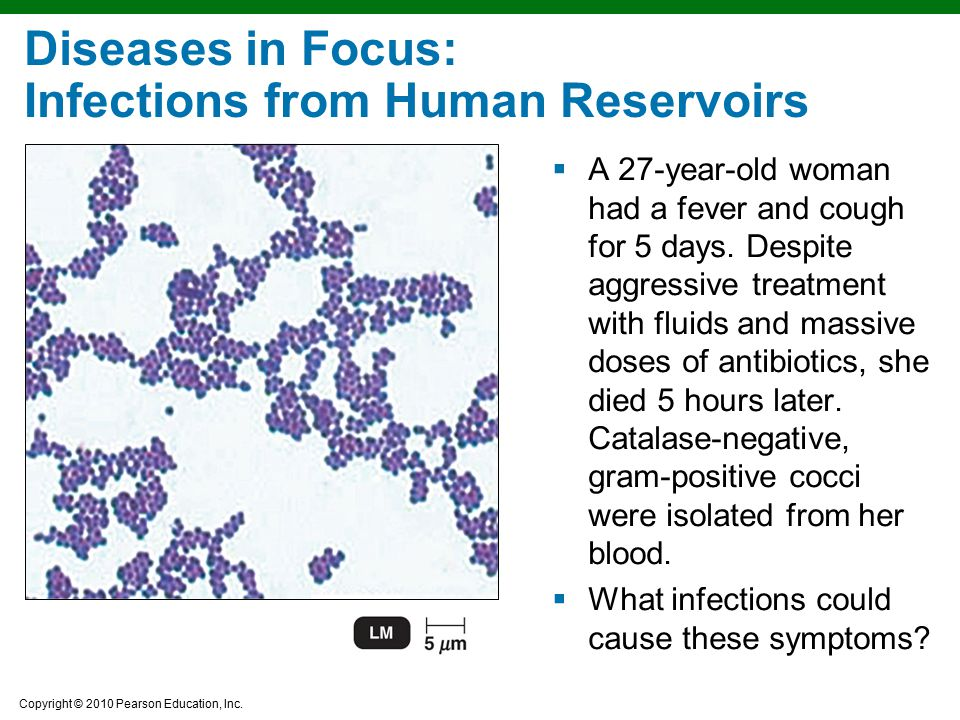 Diseases in Focus: Infections from Human Reservoirs