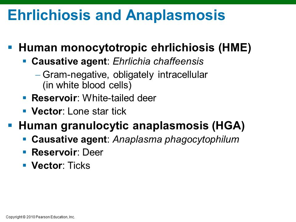 Ehrlichiosis and Anaplasmosis
