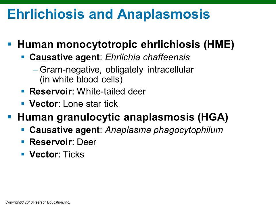 Ehrlichiosis and Anaplasmosis