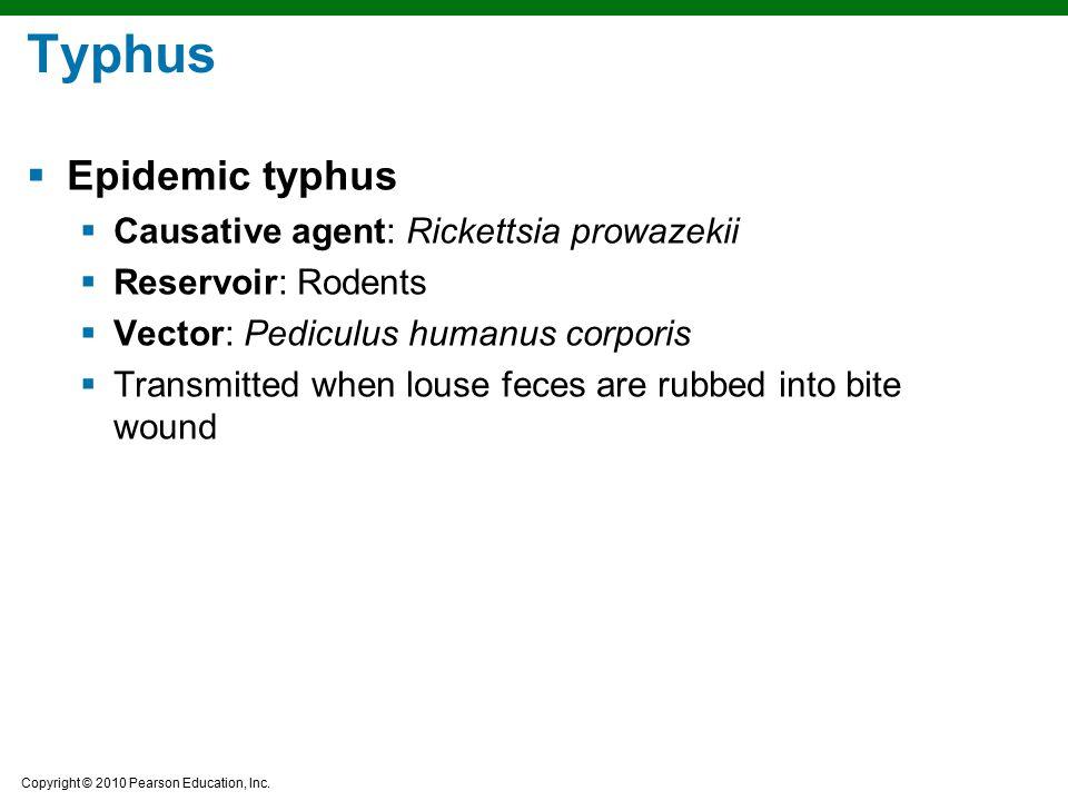 Typhus Epidemic typhus Causative agent: Rickettsia prowazekii