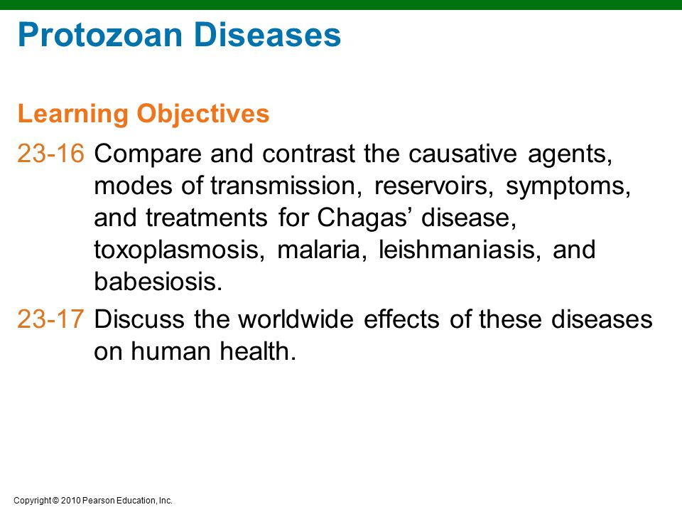 Protozoan Diseases Learning Objectives