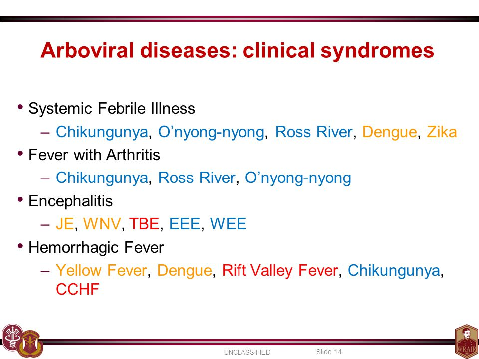 Arboviral diseases: clinical syndromes