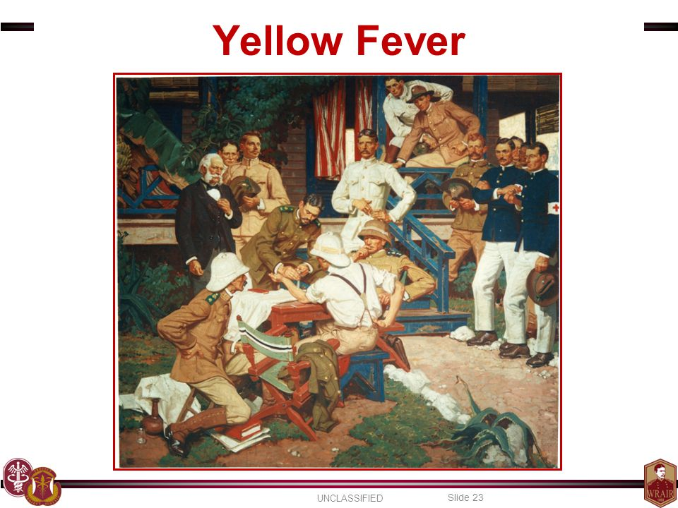 Yellow Fever Finally, yellow fever. The virus that made Walter Reed famous.