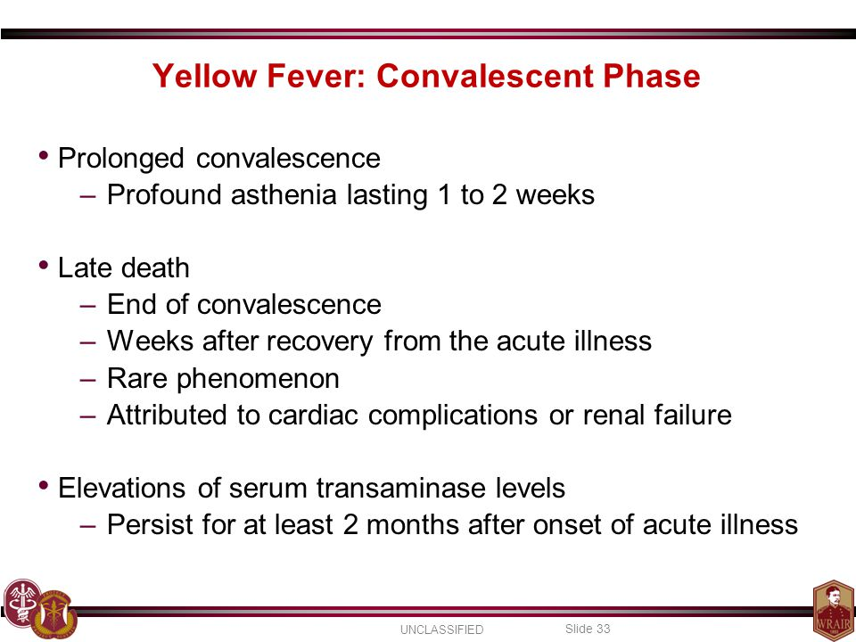 Yellow Fever: Convalescent Phase