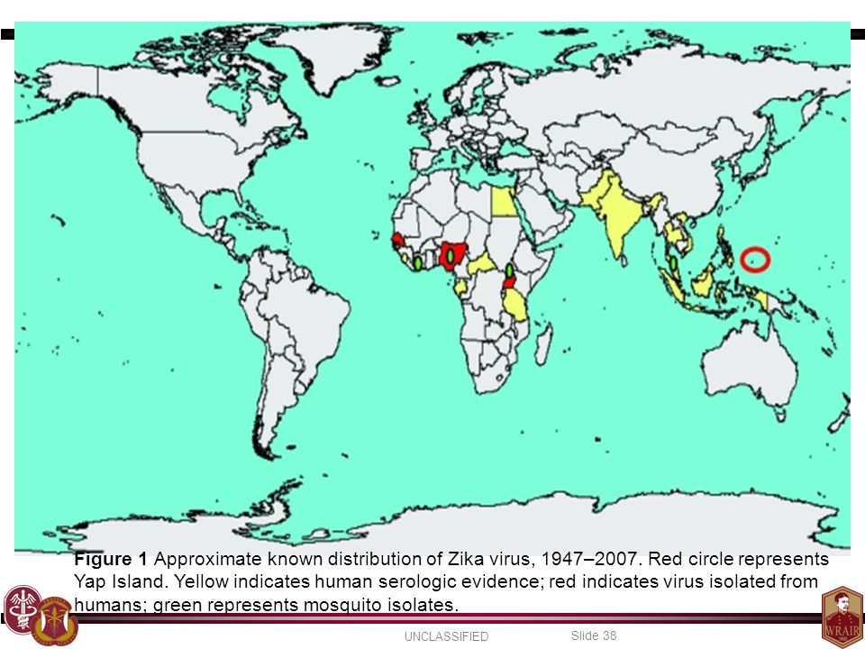 Figure 1 Approximate known distribution of Zika virus, 1947–2007