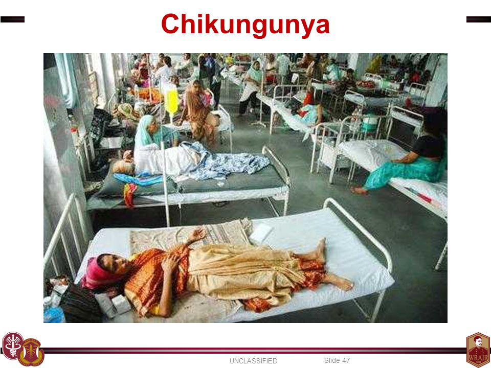 Chikungunya Chikungunya can also occur in epidemics and can result in a more severe disease requiring hospitalization.