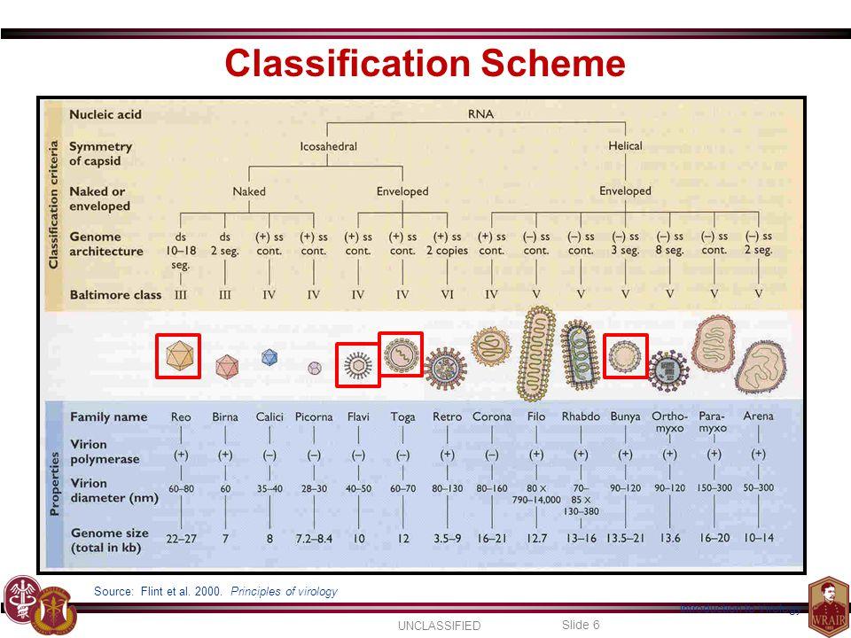 Classification Scheme