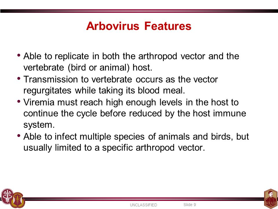 Arbovirus Features Able to replicate in both the arthropod vector and the vertebrate (bird or animal) host.