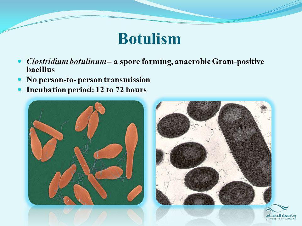 Botulism Clostridium botulinum – a spore forming, anaerobic Gram-positive bacillus. No person-to- person transmission.