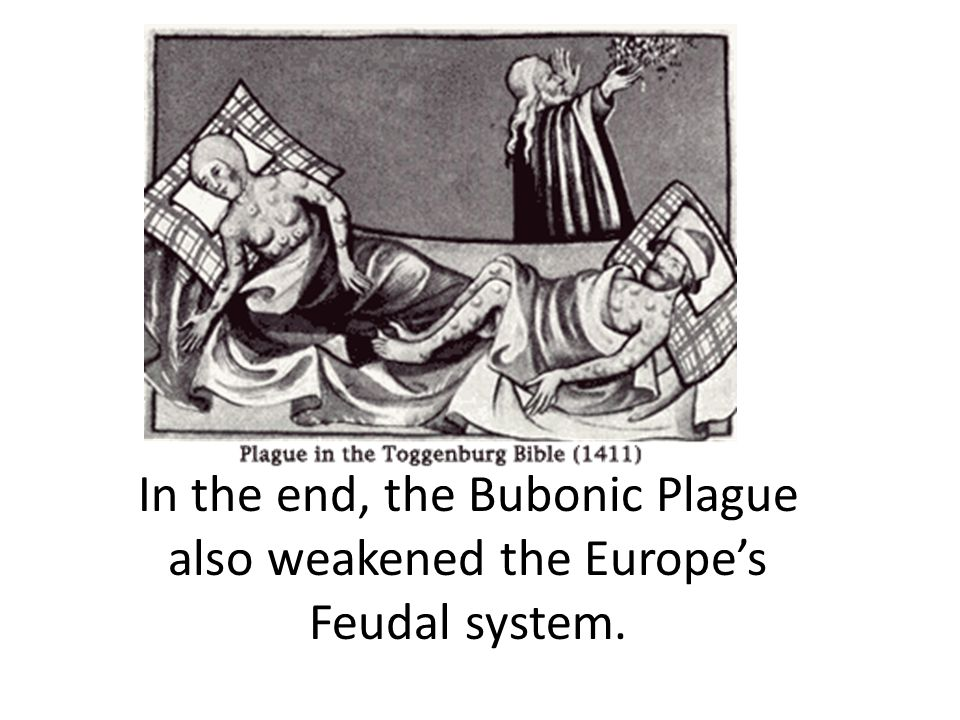 In the end, the Bubonic Plague also weakened the Europe's Feudal system.