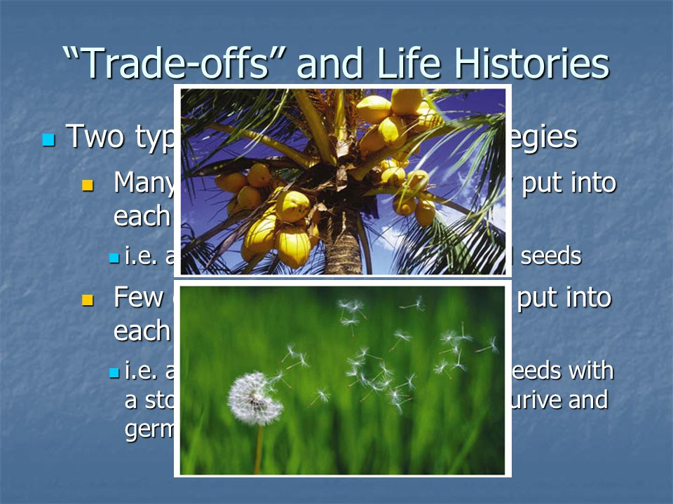 Trade-offs and Life Histories