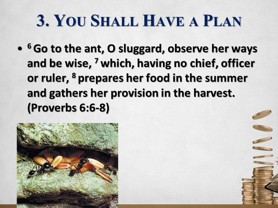 3. You Shall Have a Plan