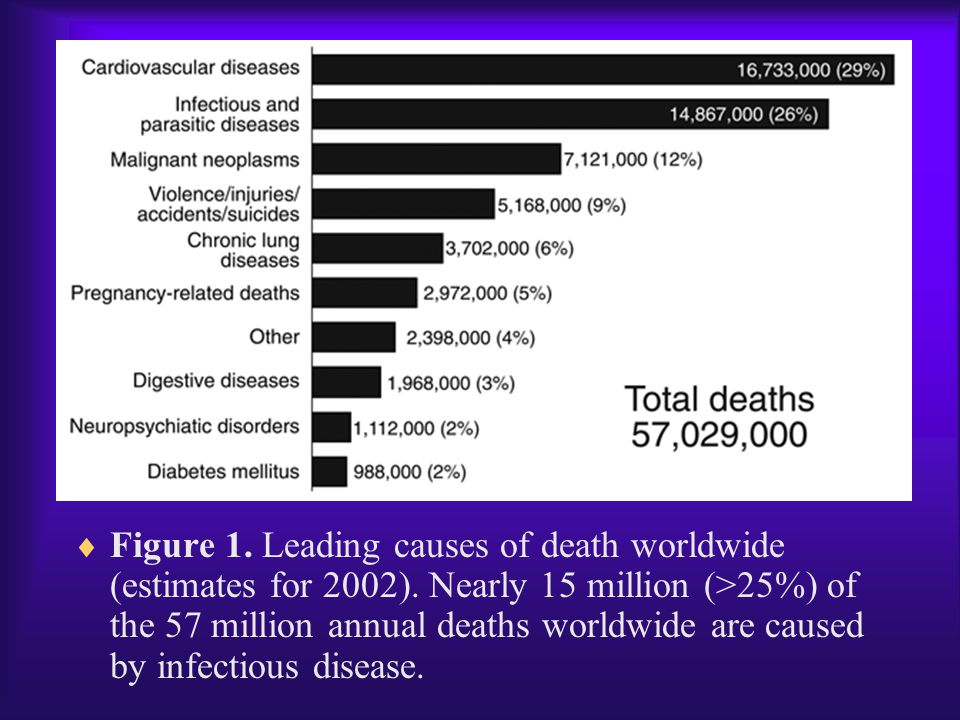 Figure 1. Leading causes of death worldwide (estimates for 2002)