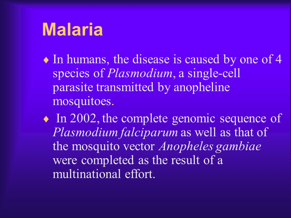 Malaria In humans, the disease is caused by one of 4 species of Plasmodium, a single-cell parasite transmitted by anopheline mosquitoes.