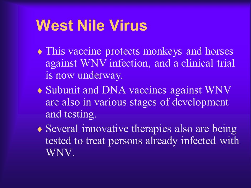 West Nile Virus This vaccine protects monkeys and horses against WNV infection, and a clinical trial is now underway.